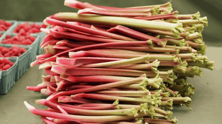 Farm-fresh and hand-picked raspberries and stalks of rhubarb