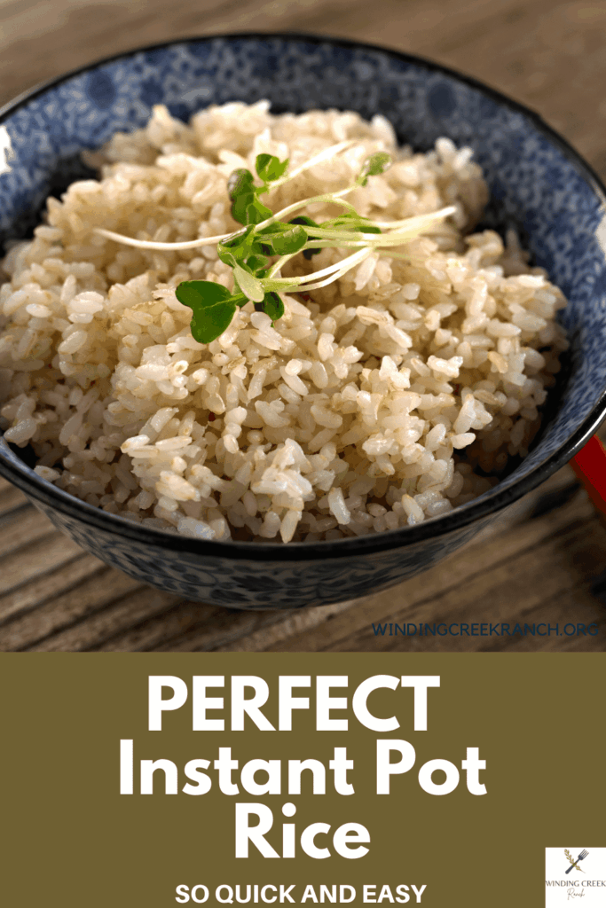 Perfect Instant Pot Brown Rice that comes out perfect every time, it is the quickest and easiest way to make rice