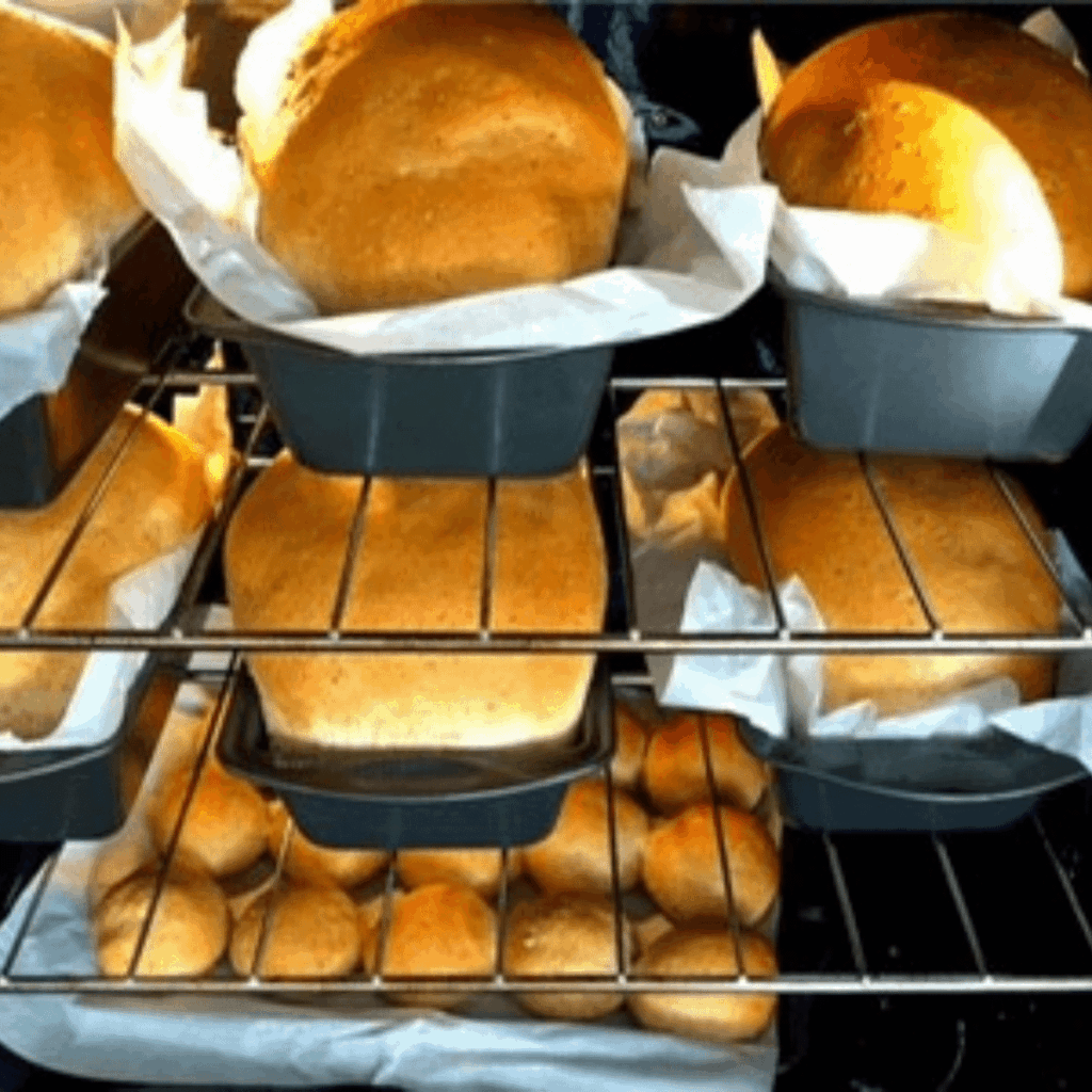 Loaves of whole wheat bread baking in oven