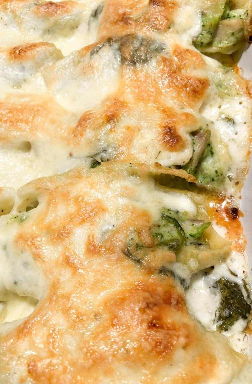 Stuffed alfredo shells with chicken, broccoli, and spinach in homemade alfredo sauce