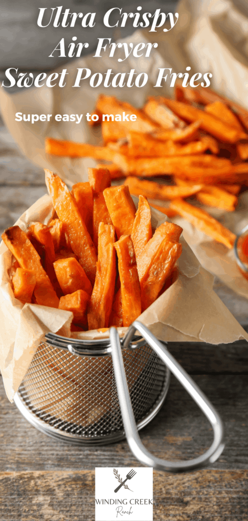 Sweet potato fries in a serving container